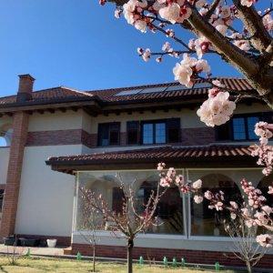 Casa Verde Buftea
