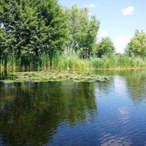 Teren pe malul Lacului Snagov